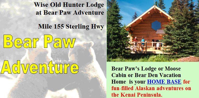 Bear Paw Adventure Cabins in Anchor Point, Alasika