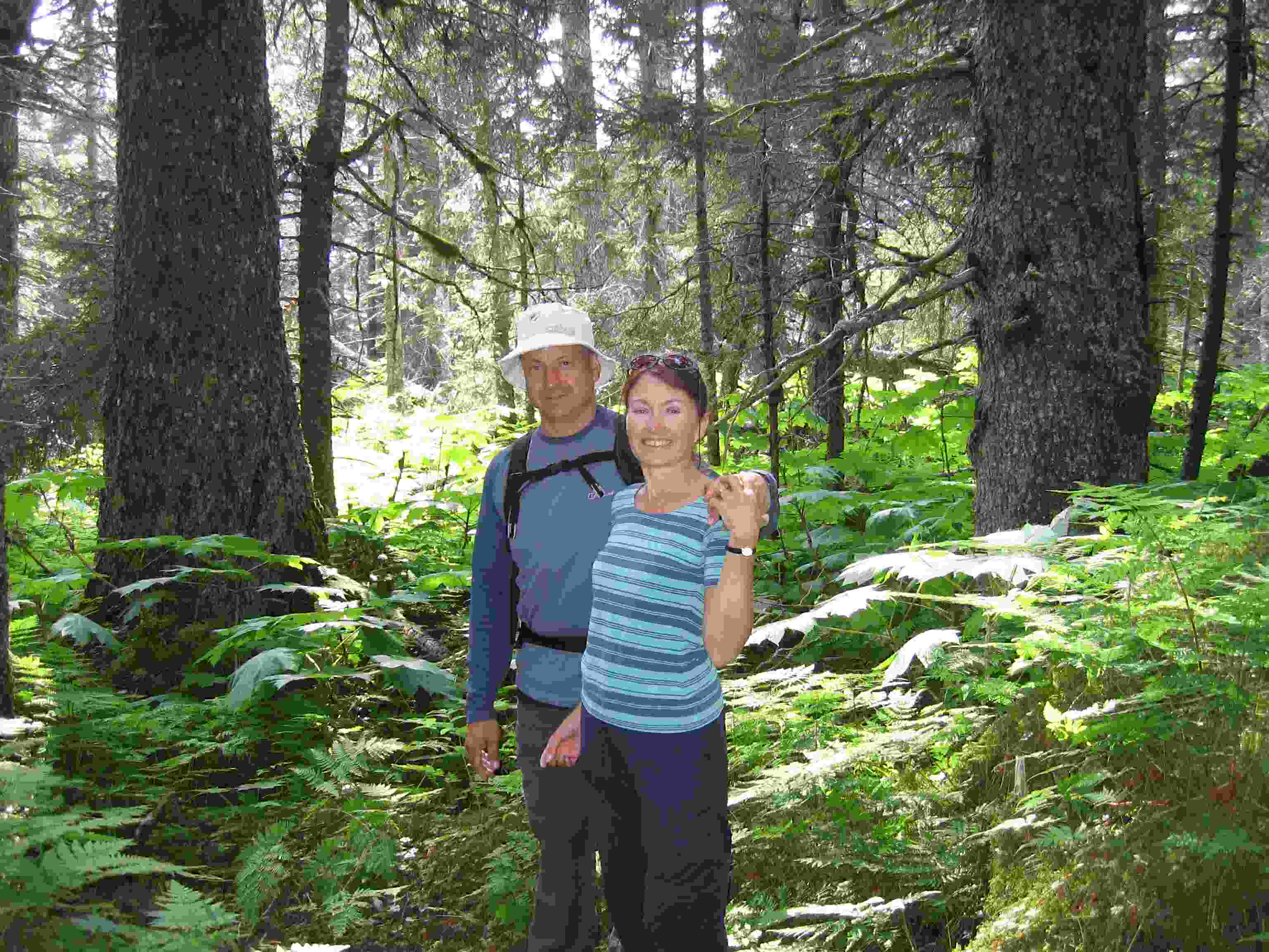 Hiking in Kachemak Bay gives one a treat to a heathy forest and lush undergrowth