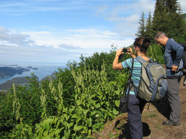 Mountain hiking in Kachemak Bay offers day hikes from tidewater to mountain tops