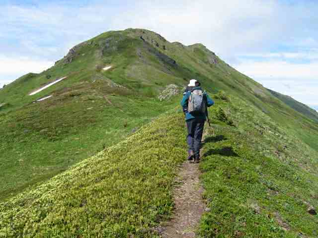 Experience alpine hiking at only a few thousand feet above Kachemak Bay.